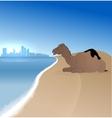 Detailed Abu Dhabi silhouette skyline vector image