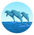 three dolphins synchronously jump out of water vector image