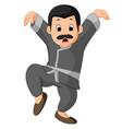 funny kung fu cartoon vector image