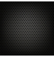 Metallic Perforated Background vector image