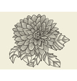 Hand drawn sketch flower vector image