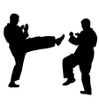 black silhouettes of karate Sport vector image vector image