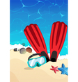 Mask and flippers on the beach vector image