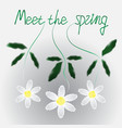 watercolor daisies spring background vector image