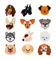funny cartoon dog faces cute puppy animal vector image
