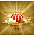 Circus old style background vector image