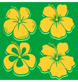 Hibiscus Collection in green vector image