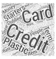 creditcardapplication Word Cloud Concept vector image