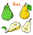 set of colorful pear isolated on white background vector image