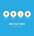 flat icon maple set of leaf maple linden and vector image