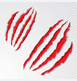 animal claws scratching vector image