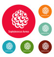 staphylococcus aureus icons circle set vector image