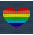 Rainbow Knitted Heart vector image