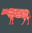 Beef Cuts Chart vector image