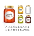 Glass Jars Bottles with Jam Confiture Honey vector image
