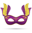 Purple mask with feathers vector image