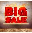 Big burn sale template interior vector image