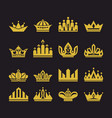 big set of crowns vector image