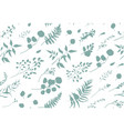 seamless pattern of eucalyptus palm fern leaves vector image