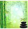 Zen background vector image