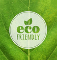Eco Label With Leaf Texture vector image vector image