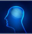 brainprint vector image