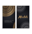 luxury wedding invitation with mandala vector image