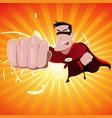 super hero - male vector image