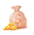 banking sack full of money dollar banknote bills vector image