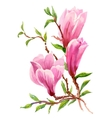 Watercolor Summer Garden Blooming Magnolia Flower vector image