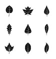 black leaf icons set simple style vector image