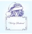 Christmas kitten in Santa stocking hat hand drawn vector image