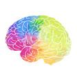 human brain with rainbow watercolor spray on a vector image