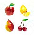 Set of juicy fruit polygon Apple lemon cherry an vector image