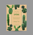 tropical cactus summer background vector image