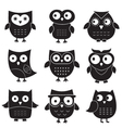 Owls set isolated elements vector image