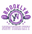 graphic design brooklyn new york city for t-shirts vector image