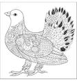 Pigeon doodle vector image