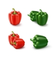 Colored Green and Red Sweet Bell Peppers vector image