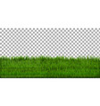 grass border with isolated background vector image