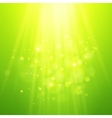 Green rays of light bokeh blurred vector image vector image
