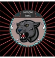 Portrait of a panther vector image