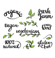 Lettering - organic natural food vegan and vector image