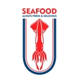 Seafood restaurant retro icon with european squid vector image
