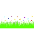 Colored butterfly on a seamless grass vector image
