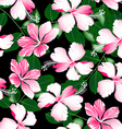 Variegated pink tropical hibiscus flowers seamless vector image