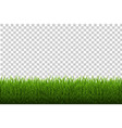 grass border vector image