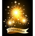 Congratulations Fireworks vector image