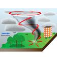 tornado vector image