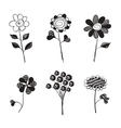 Hand Drawn Flowers Doodles Isolated vector image vector image